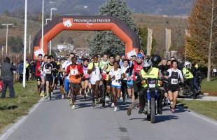 Prosecco Run di Vidor: l'unica maratonina che passa dentro 17 cantine