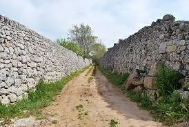 Eco Trail dei Muri a secco: si corre sabato 14 febbraio