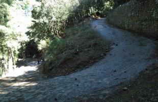 Biecotrail running: Domenica a Castelbuono  al via il 'Vivinatura'