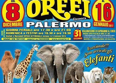 A Palermo fino al 16 gennaio il Circo Eleonora Orfei